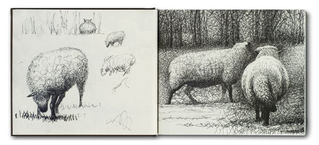 Henry-Moore sheep