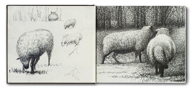 Henry-Moore sheep